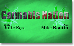 Cannabis Nation